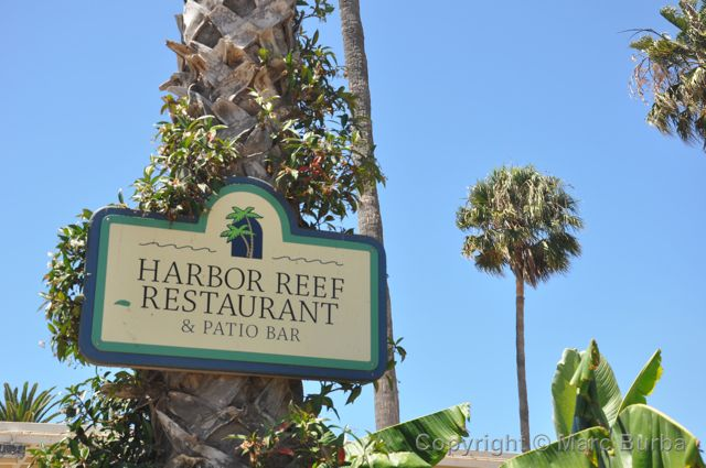Catalina Harbor Reef restaurant