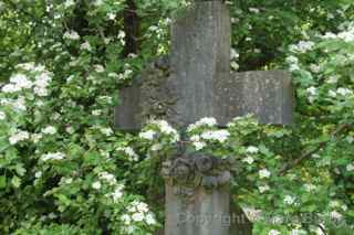 Arnos Vale rose wreath