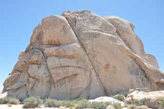 Joshua Tree Intersection Rock