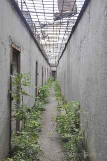Patarei Prison walking yards