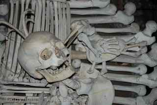 Sedlec Ossuary coat of arms