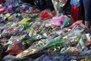 Paul Walker Memorial Meet flowers