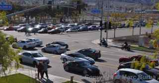 Paul Walker Memorial Meet line of cars