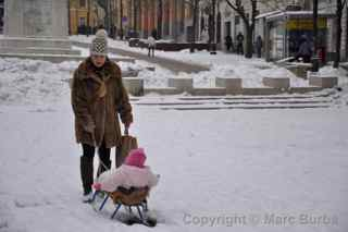 mother baby sled