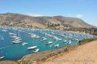 Isthmus Cove Catalina Island.