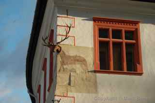 Stag House Sighisoara