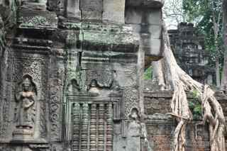Ta Prohm, Cambodia, carvings